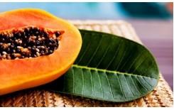 Полезные свойства папайи (видео)